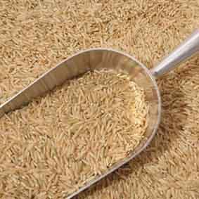 فواید برنج قهوه ای چیست؟