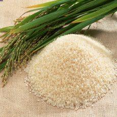 انواع برنج نیم دانه