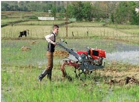 تیلر کشاورزی