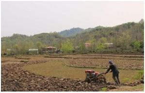 خواب مزارع کشاورزی برای حاصلخیزی بیشتر