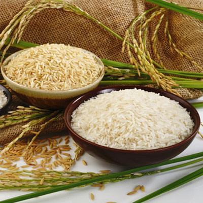 پس از برداشت برنج چه اتفاقی می افتد؟